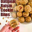 "oatmeal cookie balls in a bowl ""no bake oatmeal raisin cookie bites"""